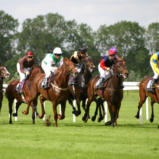 Off track horse betting locations in toronto natwest spread betting reviews on spirit